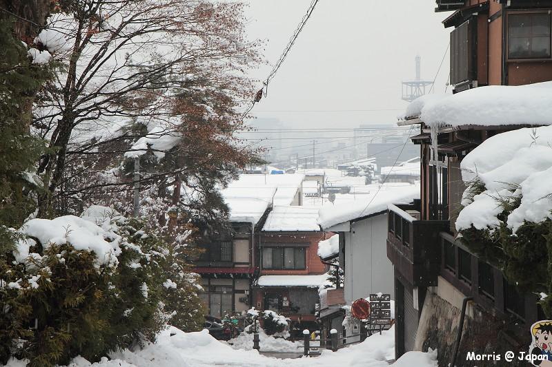 高山 東山散步道 (22)