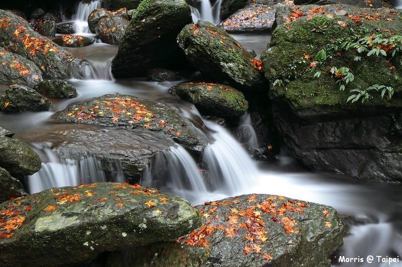 雲森瀑布 楓紅楓落 (2)