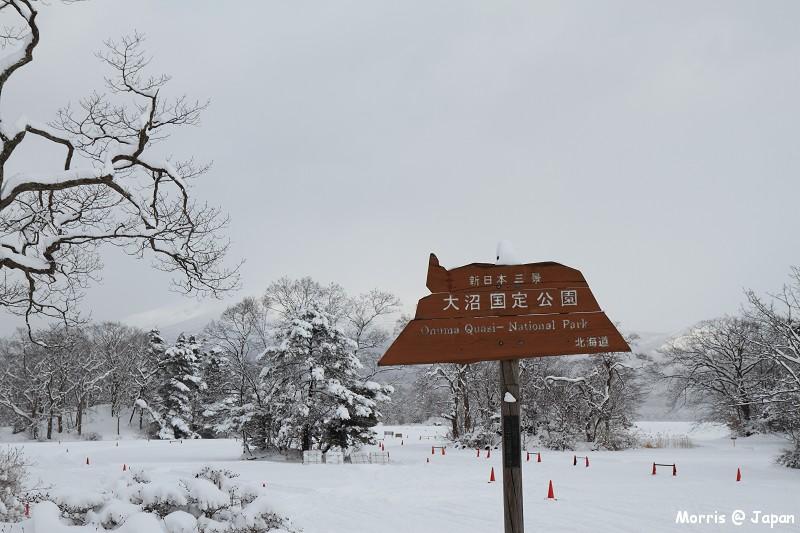 大沼公園 (25)