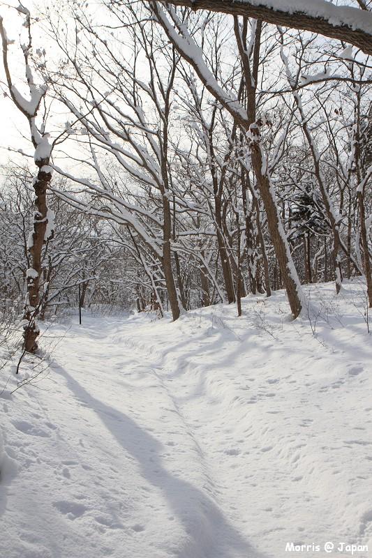 大沼公園 (72)