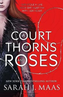 a court of thorns