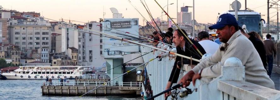 Frischer Fisch, Menschenmassen und Katzengejammer