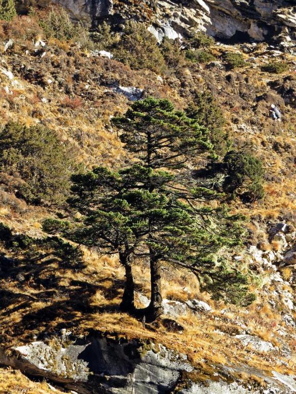 Landschaft, Everest Base Camp Trek