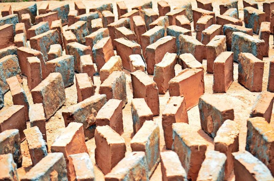 Lehmziegel trocknen in der Sonne, Auroville, Sacred Groves