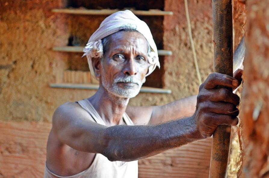 Arbeiter aus Tamil Nadu, Auroville, Sacred Groves