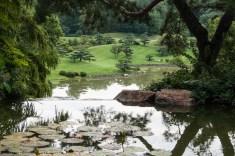 VButler-Chicago Botanic Garden#2-Waterfall Overlook