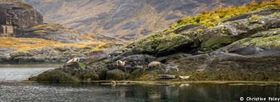 Foley Scotland (15 of 15)