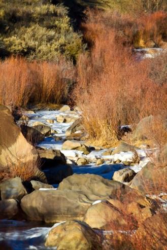 Taos+Rio+Grand+Side+Stream
