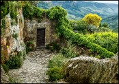 Shed in Bagnoregio