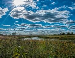 Gail Chastain - Sun on the Prairie