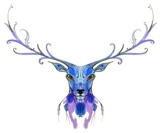 blog-reindeer-01-symmetry