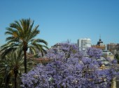 View across Malaga from the Alcazaba
