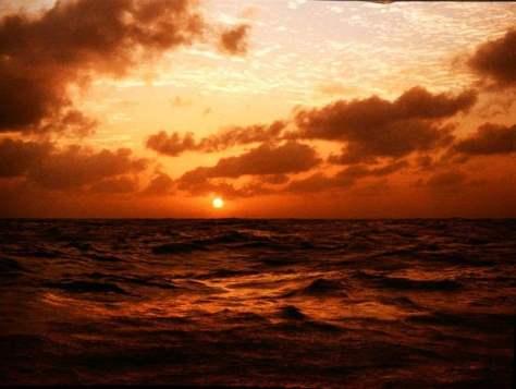 w morzu