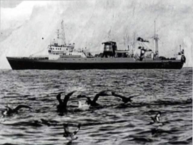 Tazar podczas wyprawy antarktycznej
