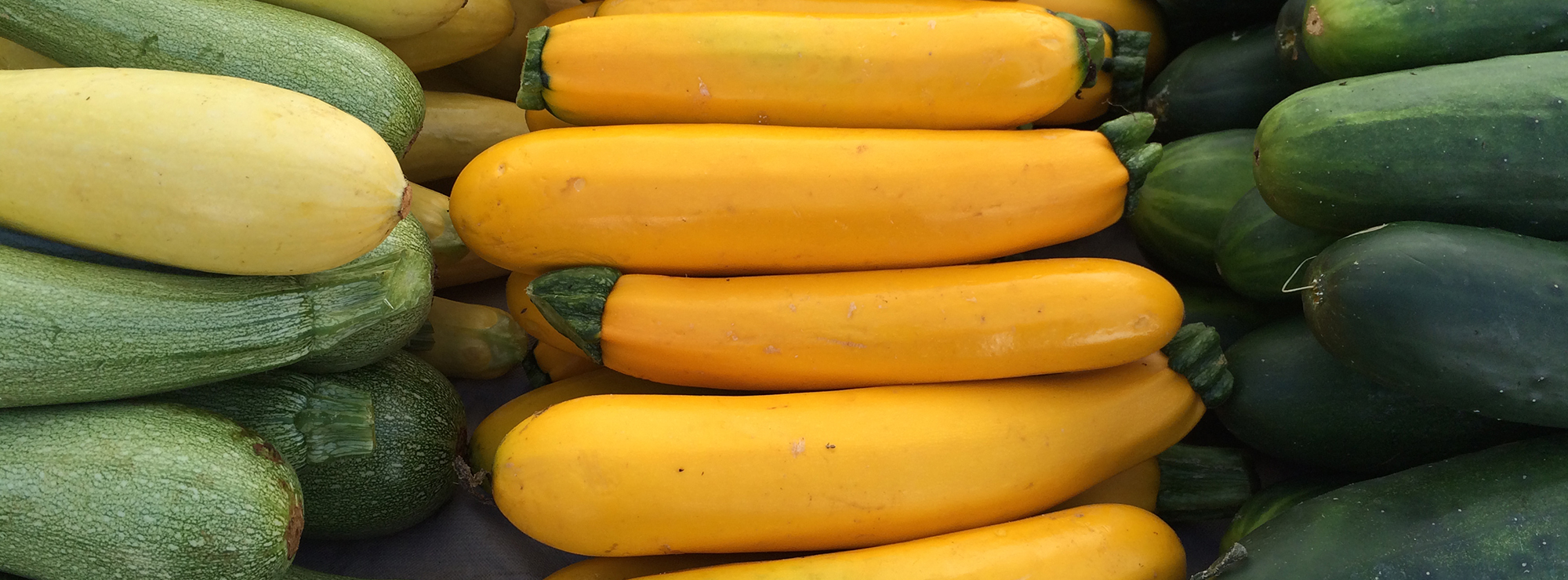 Fresh squash at the market