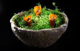 Dish by Gaggan Anand