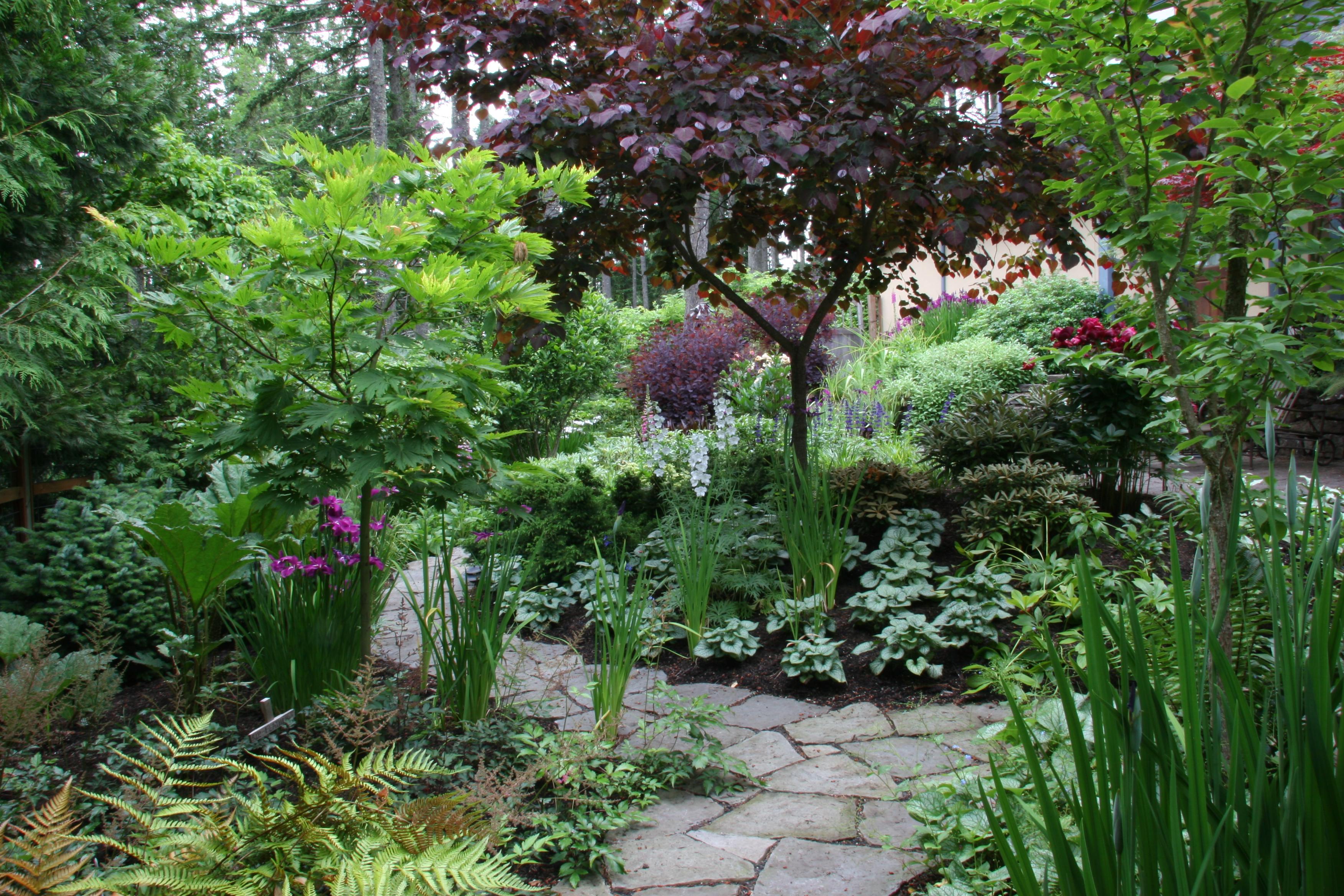 garden tour | Mosaic Gardens Journal on Shady Yard Ideas id=49808
