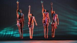 Alvin Ailey Dancers - Rainbow