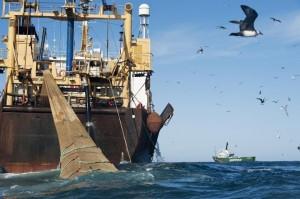 bateau-de-peche-espagnol