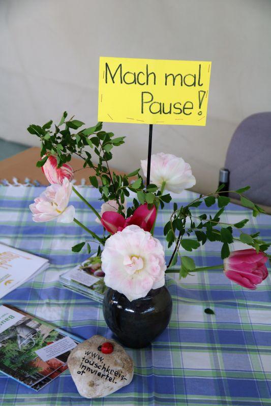 2017_05_mosauerin_pflanzenmarkt_tauschkreis_46