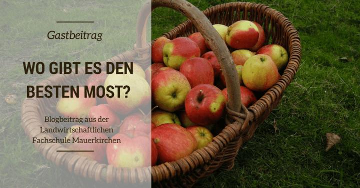 Blogs aus der Landwirtschaftlichen Fachschule Mauerkirchen – Teil 3: Wo gibt's eigentlich den besten Most?