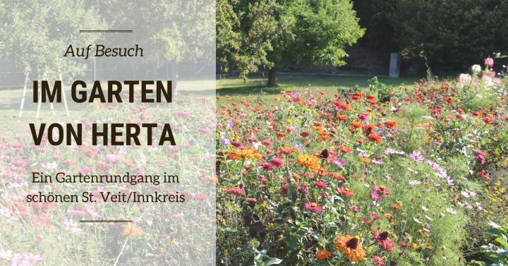 Auf Besuch: Im Garten von Herta in St.Veit