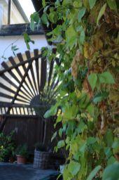 201910 mosauerin innviertel blog hofrundgang oktober 05