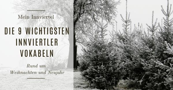die neun wichtigsten innviertler Vokalben rund um weihnachten und neujahr mosauerin innviertel blog