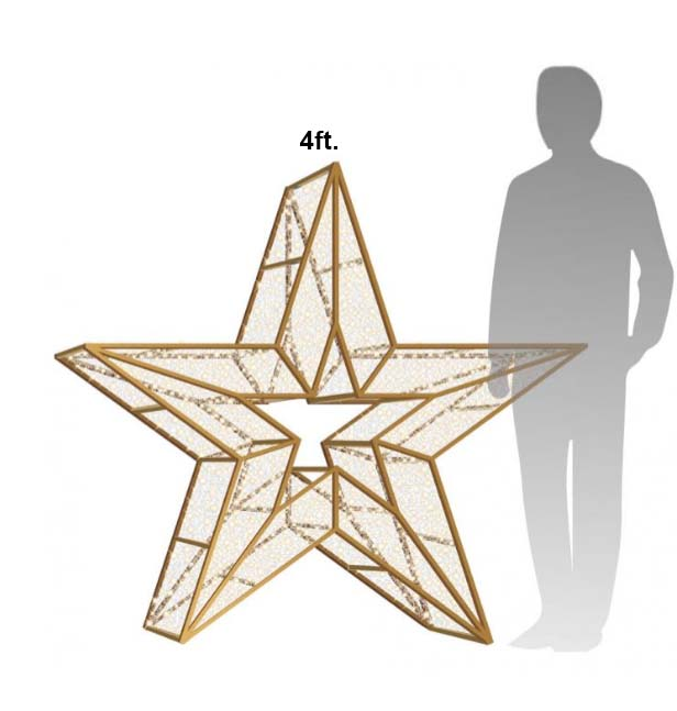 4ft Star Icon Photo Op