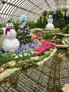 Phipps Christmas Display