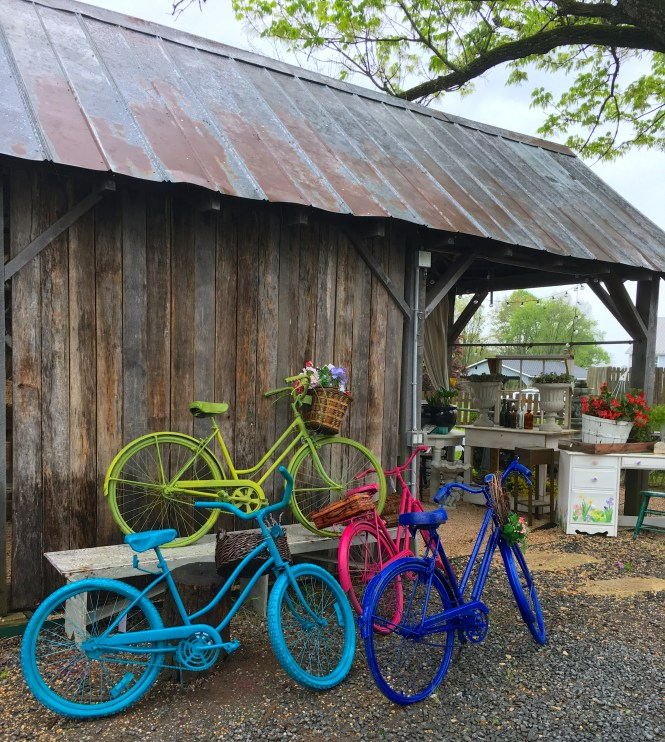 bright painted bikes