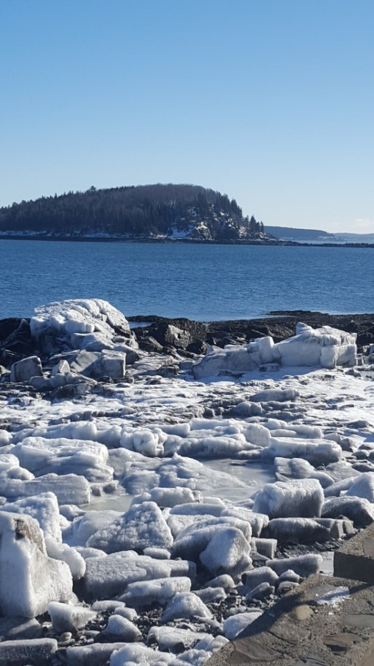 Icy Shore Path