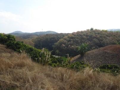 ChiangRai_16