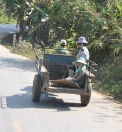 Nong Khiao_2