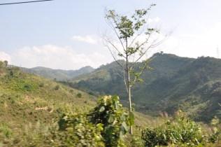Nong Khiao_4