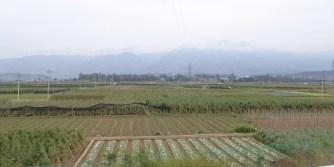 Yunnan_25