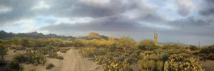 Oil landscape of panoramic view of Sabino Canyon by artist Rob Macintosh