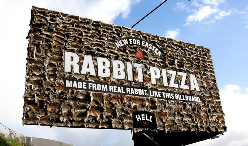 rabbit-hell-800x472