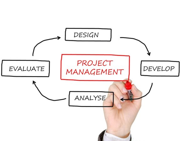Project Management as a career of the future