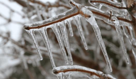 Ice Melt