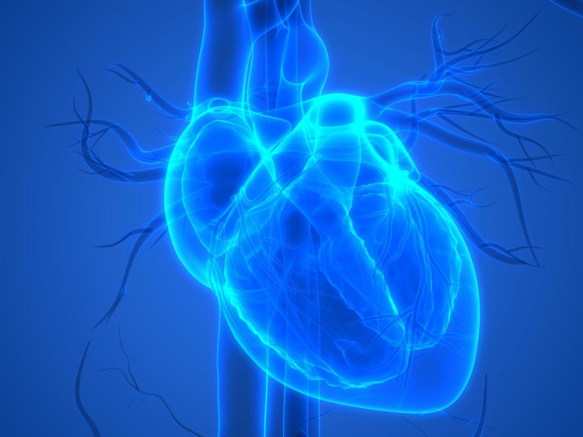 Anthos Therapeutics: прорывные кардиологические медикаменты