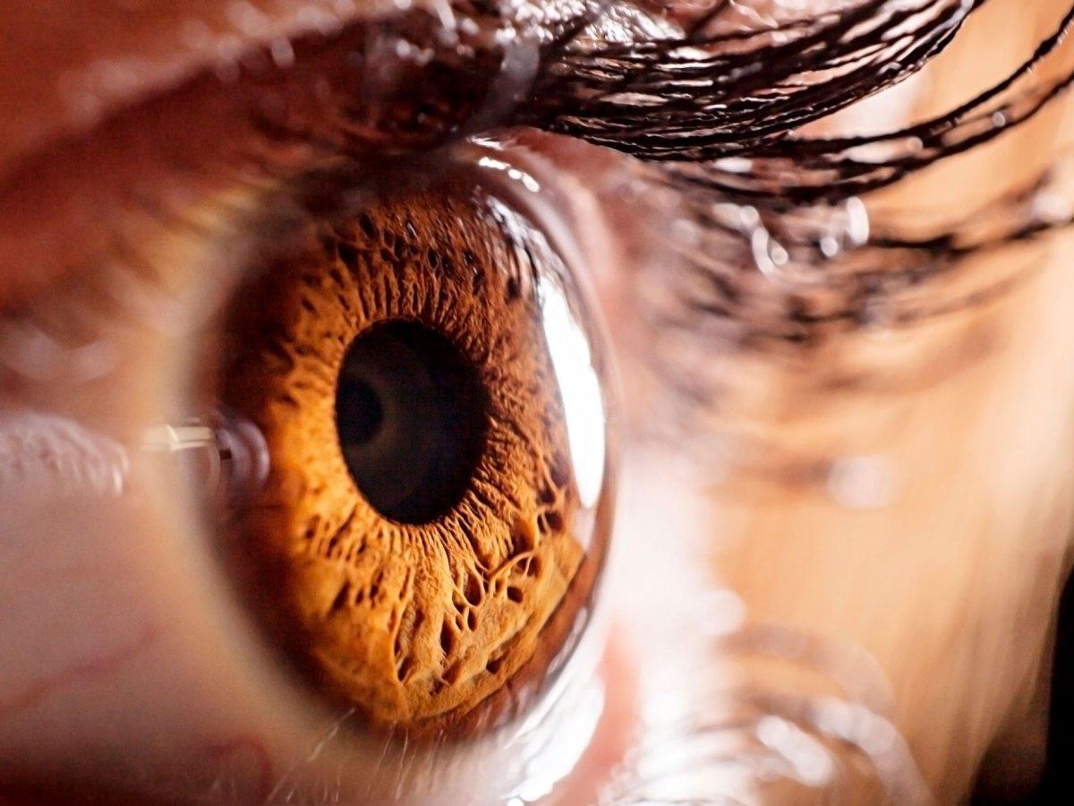 «Роклатан»: новое лекарство при глаукоме