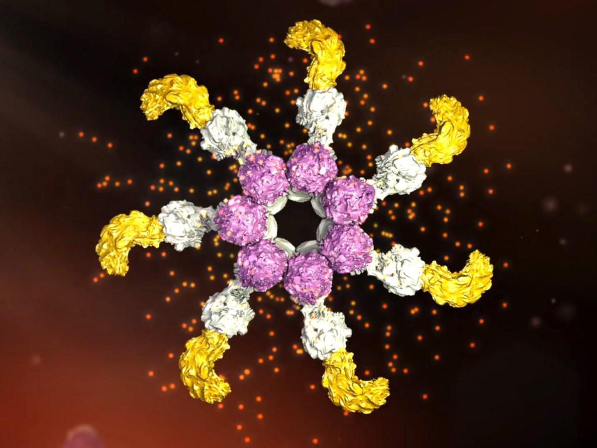 Novartis вспомнила об инфламмасомах