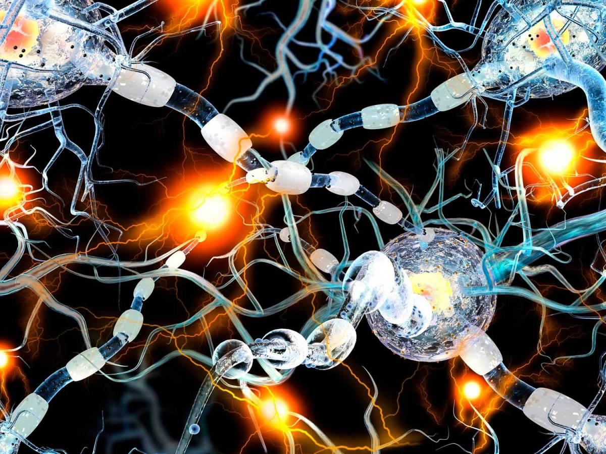 Офатумумаб против рассеянного склероза: «Окревус» вызван на дуэль