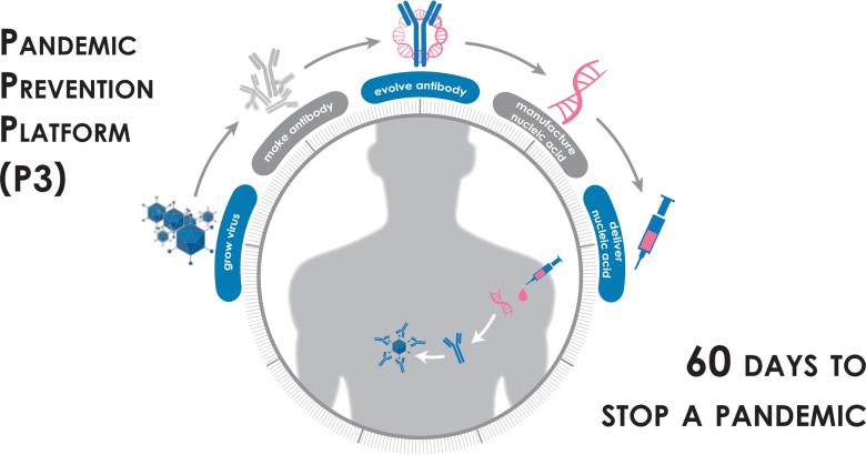 Новый коронавирус SARS-CoV-2: все лекарства и вакцины против инфекции COVID-19. Самый полный и подробный обзор в мире