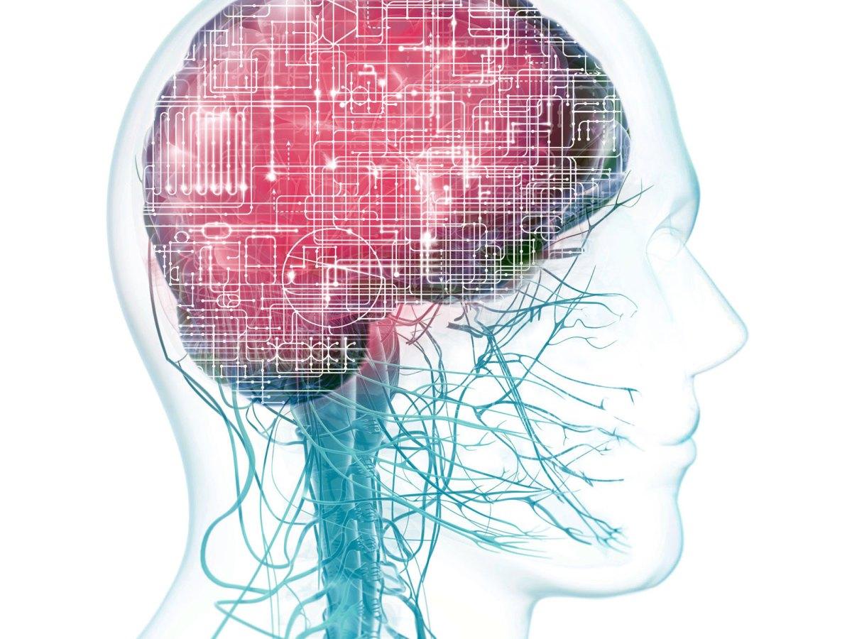 Рассеянный склероз: биотин не помог