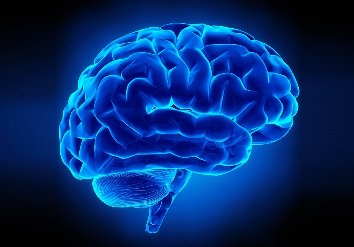 brain - AbbVie отказалась от инновационной генотерапии болезней Альцгеймера и Паркинсона