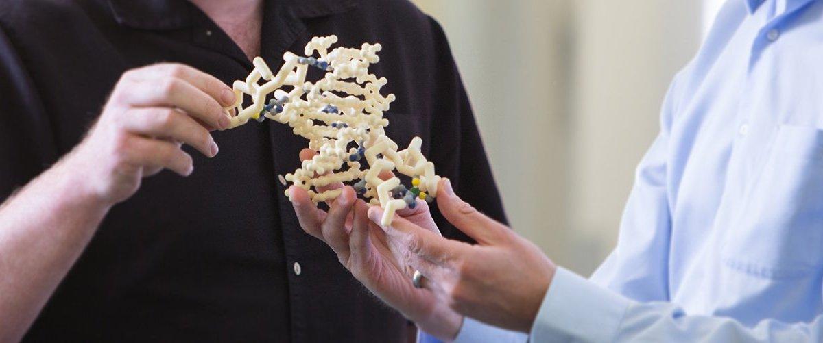 zfp tf - Novartis разработает лечение аутизма на генном уровне
