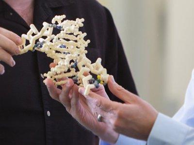 Novartis разработает лечение аутизма на генном уровне