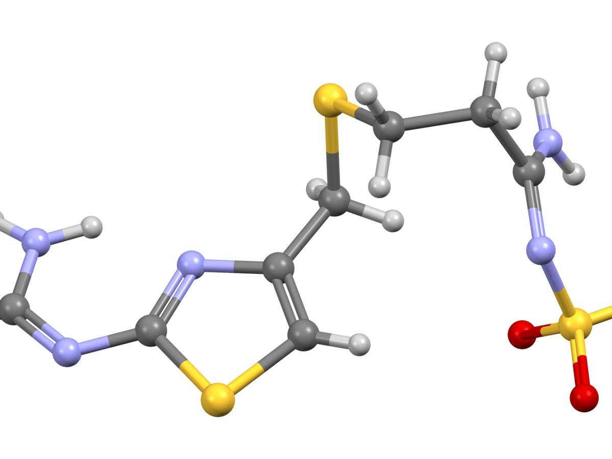 Лечение коронавируса. Фамотидин против COVID-19: новая надежда. Самый полный обзор